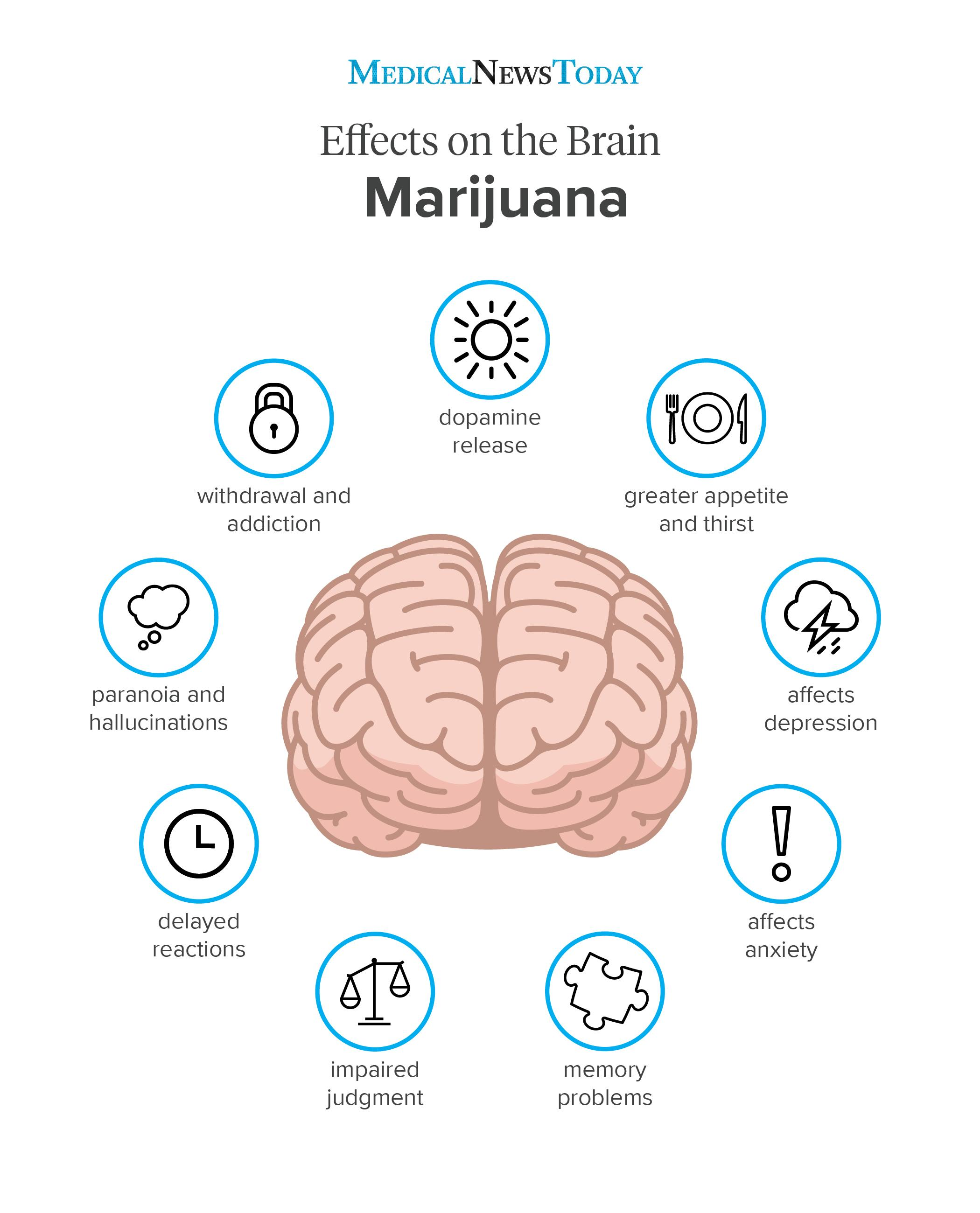 an infographic of a marijuana effects on the brain